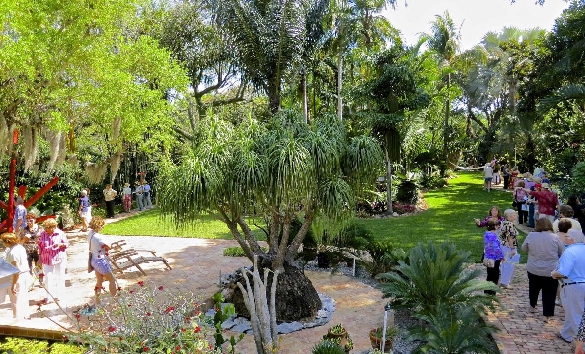 both gardens are beautifully designed and house rich tropical plant collections this tour event will be followed by a cocktail reception on the breezy - Tropical Garden 2016